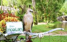 Đảo Hoa Lan - thiên đường du lịch bí ẩn tại Nha Trang