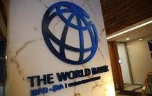 Công ty Sao Bắc Đẩu nói gì về việc bị Ngân hàng Thế giới cấm vận?