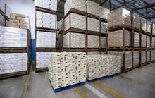Vinamilk xuất khẩu 85 container sản phẩm sữa sang Hàn Quốc
