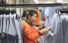 Việt Nam cam kết đấu tranh chống lao động cưỡng bức