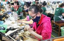 Tín hiệu khởi sắc từ thị trường lao động Đà Nẵng
