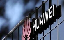 Huawei và ZTE không được đụng tới miếng bánh 8,3 tỉ USD tại Mỹ