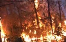 Triệu tập người phụ nữ đốt rác gây cháy rừng khiến hơn 1.000 người tham gia dập lửa
