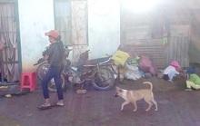 Lâm Đồng: hàng chục trường hợp mắc bệnh lạ