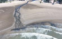 CLIP: Cảnh nước thải từ trang trại nuôi tôm biến bãi biển thơ mộng thành biển chết