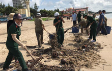 Cận cảnh 800 người  giải cứu bãi biển Vũng Tàu