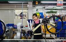 Hãng xe đạp lớn nhất thế giới sản xuất không kịp bán