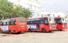 Công ty CP Xe khách Phương Trang trúng gói thầu 9 tuyến xe buýt ở Đồng Tháp