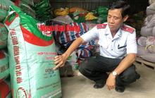 Phạt nặng HTX hám lợi, bán lúa giống nhái thương hiệu ST 24
