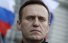 Bệnh viện Đức phát hiện chất độc trong người chính trị gia đối lập Nga Alexei Navalny