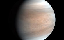 Đã phát hiện thiên đường sự sống ở hành tinh gần Trái Đất nhất
