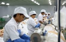 Lao động tại Hàn Quốc hết hạn được chuyển sang làm lao động thời vụ