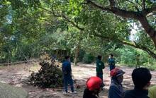Phát hiện thi thể bé trai mất tích nhiều ngày gần núi Chứa Chan