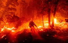 Hoả ngục bất thường ở Mỹ: Lốc xoáy lửa liên tiếp, cột khói cao khủng khiếp