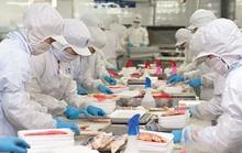 12 doanh nghiệp được xuất khẩu lại thủy sản vào Ả Rập Saudi sau hơn 2 năm bị cấm cửa