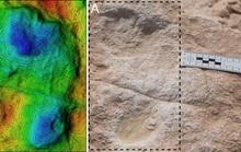 """Hàng trăm """"bóng ma"""" 120.000 năm không mờ xuất hiện giữa sa mạc Ả Rập"""