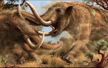 Dạo bờ sông, phát hiện tàn tích quái thú 10.000 tuổi