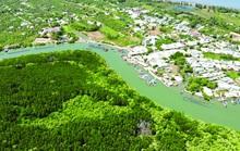 Dự kiến quy hoạch 550 ha đất ở Cần Giờ làm cảng biển