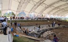 Gần 300 nhà khoa học, khảo cổ tìm hiểu về bãi cọc Bạch Đằng mới được phát hiện
