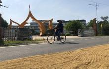 Dính đến tuyến đường 70 tỉ đồng dang dở, nhiều quan chức Quảng Ngãi bị kỷ luật
