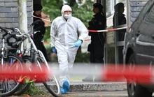 Đức: Người mẹ trẻ giết 5 con nhỏ rồi lao vào tàu tự tử