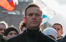 Điện Kremlin: Nga cũng muốn biết chuyện gì xảy ra với ông Alexei Navalny