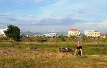 Quảng Bình: Đi thể dục, bàng hoàng nhìn thấy nam thanh niên tử vong bên bờ kênh