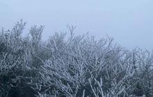 Miền Bắc rét đậm, Nam Bộ lạnh về đêm và sáng sớm