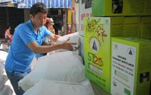 Gạo ST25 làm nóng thị trường quà Tết