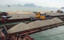 Vụ doanh nghiệp mất tiền tỉ vì công văn... hỏa tốc: Hải quan Quảng Ninh đề nghị tháo gỡ