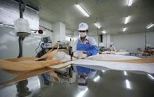 Lưu ý dành cho lao động muốn sang Hàn Quốc, Đài Loan làm việc