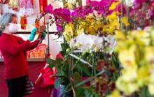 Mỹ: Chợ hoa Tết của người Việt ở khu Phước Lộc Thọ gây bất ngờ