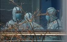 Phát hiện bất ngờ của nhóm điều tra WHO tại Vũ Hán