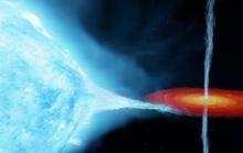 Quái vật Thiên Nga bằng 60 Mặt Trời hóa lỗ đen, nuốt đồng loại