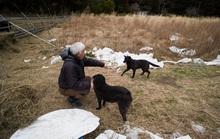 Nhật Bản sau thảm họa động đất, sóng thần: 10 năm chưa đủ nguôi ngoai