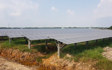 Bộ Công Thương lập đoàn kiểm tra về phát triển điện mặt trời