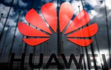 Tập đoàn Huawei nuôi cá bù lỗ cho mảng công nghệ sau những cú ra đòn từ Mỹ