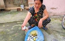 Bóng golf oanh tạc làm bể mái tôn, cửa kính và uy hiếp người dân ở Quảng Bình