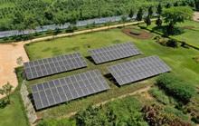 Năng lượng mặt trời được triển khai trên toàn bộ hệ thống trang trại Vinamilk