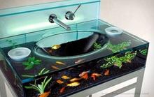 Mang cả đại dương vào nhà
