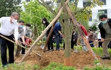 Thừa Thiên - Huế: Xây dựng môi trường xanh, sạch, đẹp tại đơn vị
