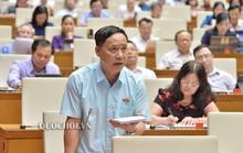 Đại biểu Nguyễn Mai Bộ làm nóng nghị trường khi nói về những khuyết tật trong xây dựng luật