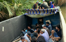 CLIP: Cảnh sát hình sự phá trường gà hoạt động tinh vi ở Kiên Giang