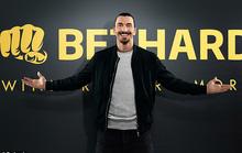 Kinh doanh cá cược, Zlatan Ibrahimovic lo bị hủy hoại sự nghiệp