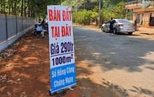 Trị sốt đất, HoREA đề xuất hàng loạt loại thuế