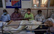 Ấn Độ: Số ca nhiễm lại tăng sốc, người đào mộ chạy đua với thời gian