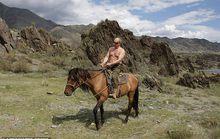 Tổng thống Putin có sức hút đối với công chúng