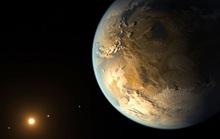 Thứ bay lên từ rừng Trái Đất có thể là dấu hiệu sự sống ngoài hành tinh