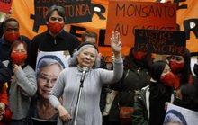 Vụ án chất độc da cam: Tòa án Pháp bác đơn kiện, bà Trần Tố Nga sẽ kháng cáo