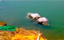 Thi thể nghi của bệnh nhân Covid-19 liên tiếp dạt vào bờ sông Hằng